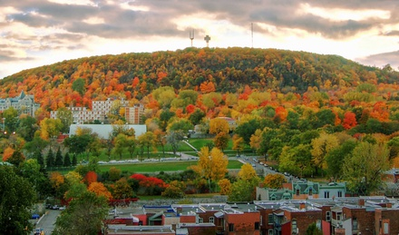 We love our Mountain. Let's support UNESCO status for Mount Royal. image